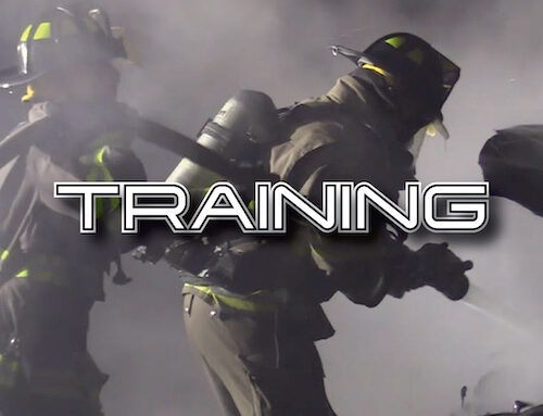 New: LIFELINE TRAINING